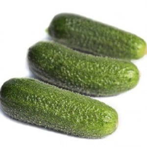 Огурец Трилоджи F1: описание и характеристика сорта, отзывы огородников об урожайности, фото семян производителя из Голландии, посадка и уход