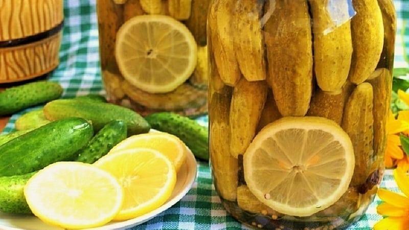 Лучшие рецепты хрустящих маринованных огурцов с лимоном на зиму