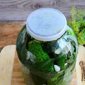 Лучшие рецепты засолки огурцов холодным способом под капроновую крышку