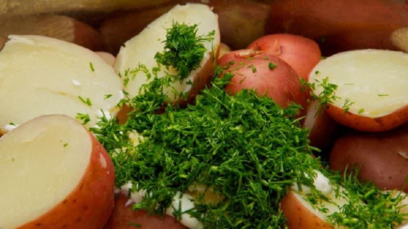 Можно ли есть картофель при грудном вскармливании