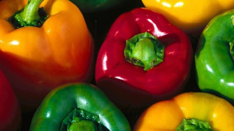 Польза и вред желтого сладкого перца и есть ли разница между цветами овоща