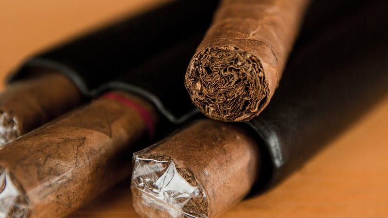 Разновидности и характеристика сортов табака