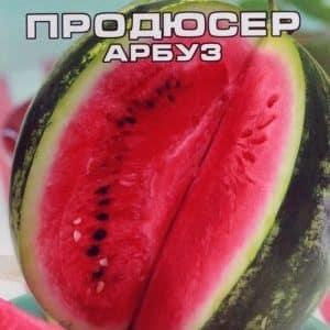"""Стоит ли покупать семена арбуза """"Продюсер"""": обзор сорта американских селекционеров, его преимущества и недостатки"""