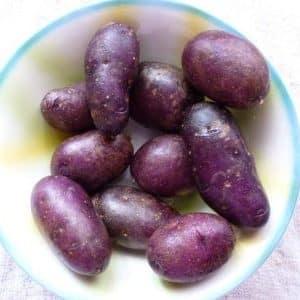 """Любительский столовый сорт картофеля """"Цыганка"""" с фиолетовой кожицей и белой мякотью"""