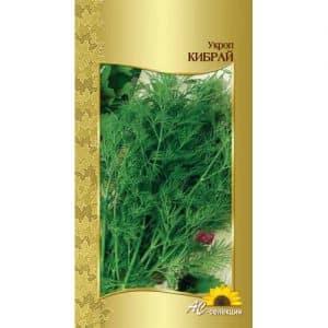 Рекомендации по уходу и выращиванию укропа Кибрай: как защитить от вредителей и грамотно собрать урожай