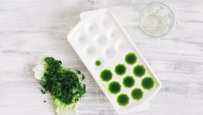 Как сделать лед из петрушки для лица: красота и здоровье кожи из простых ингредиентов