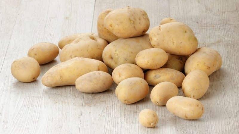 """Молодой, но перспективный немецкий сорт картофеля """"Крона"""": описание и отзывы"""