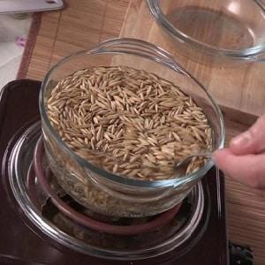 Лучшие рецепты чистки печени овсом в домашних условиях