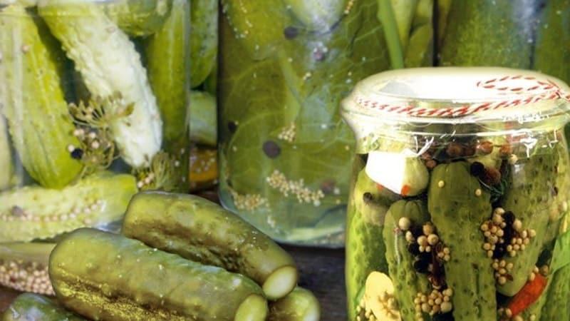 Лучшие рецепты засолки огурцов холодным способом для хранения в квартире зимой