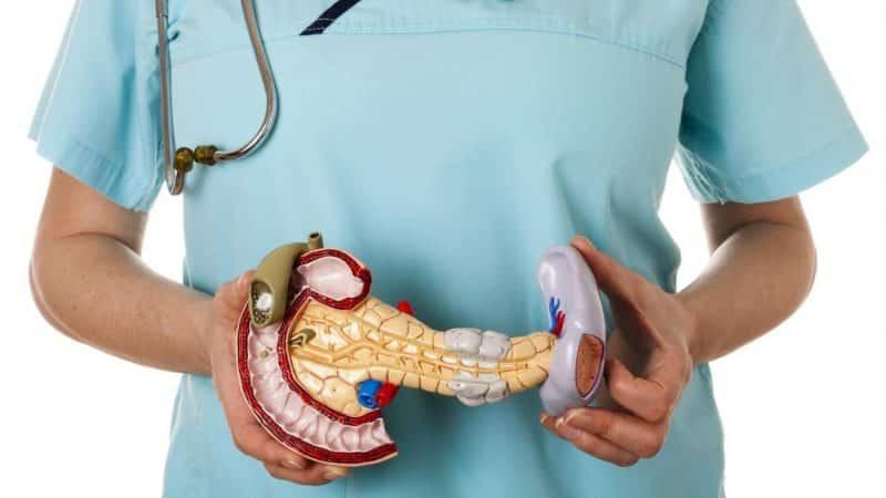 Можно ли есть лук при панкреатите или нет
