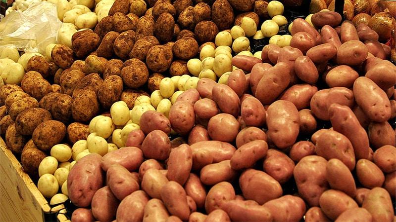 Польза и вред картофеля для организма человека