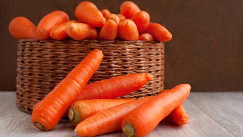 Раннеспелый гибрид моркови со сладким вкусом Нандрин f1