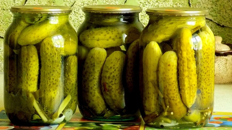 Самые вкусные рецепты консервации огурцов на зиму