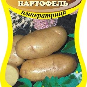 """Скороспелый сорт """"Императрица"""" для посева семенами"""