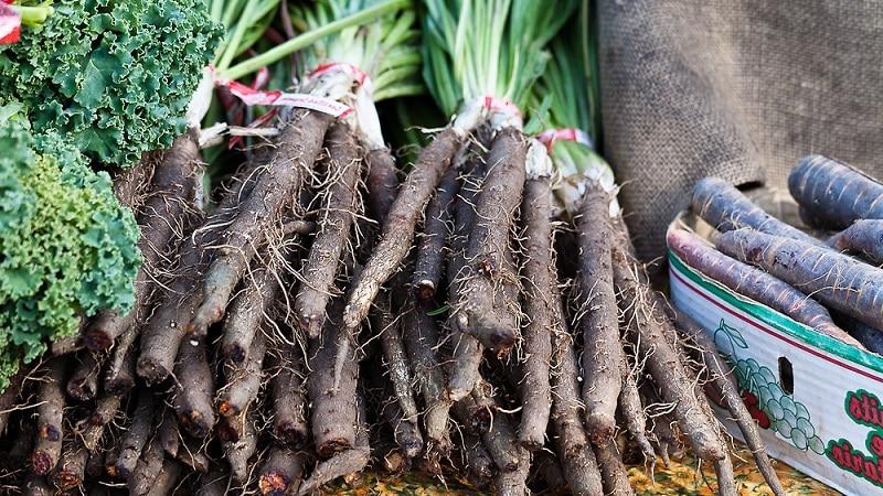 Что такое сок черной моркови: выращивание, приготовление и применение