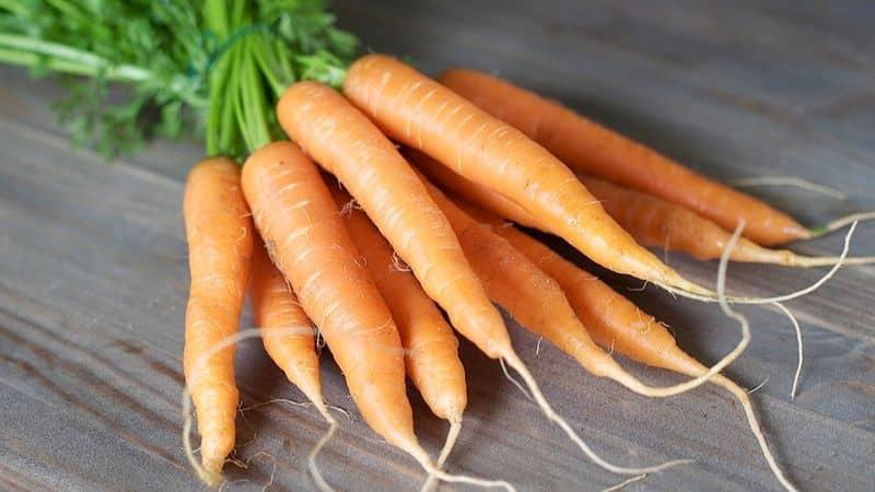 Морковка полезна для глаз