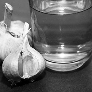Лечение тепличных огурцов от болезней: фото и описание