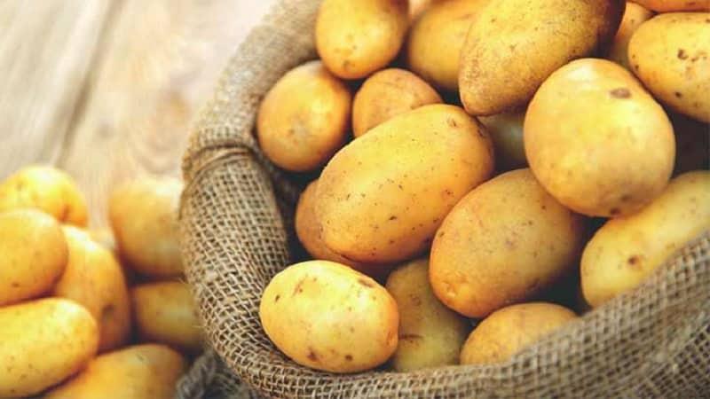 Прошла аллергия на картошку — Аллергия и все о ней