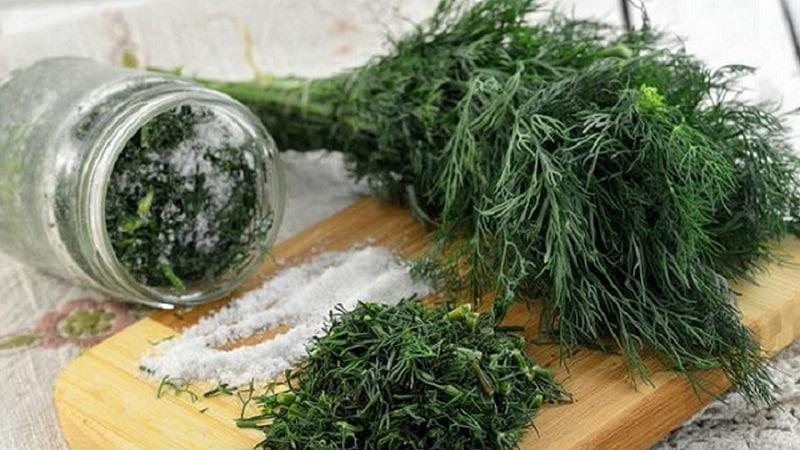Лучшие рецепты заготовок укропа на зиму