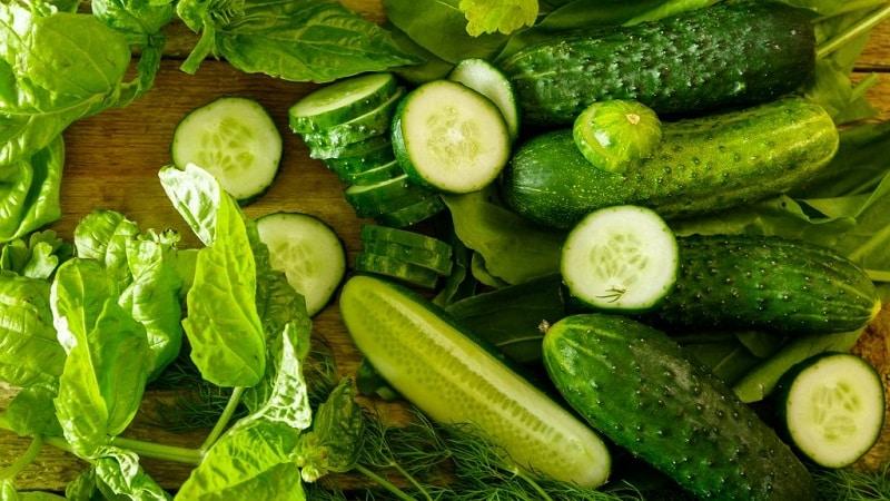 Лучшие самоопыляемые сорта огурцов для засолки и консервирования