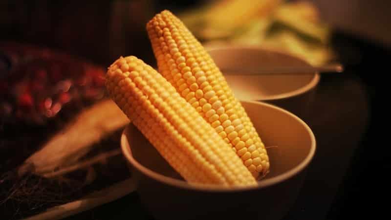 О кукурузе при похудении: можно ли есть вареную кукурузу на ночь при похудении