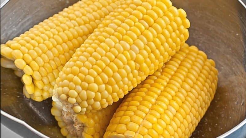 Можно ли есть вареную кукурузу при похудении: калории, польза и вред в борьбе с лишними килограммами