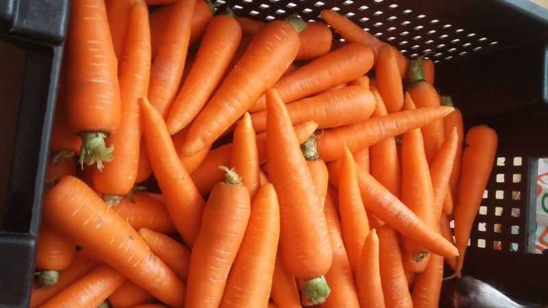 Морковь по корейски - рецепт с фото пошагово. Сочная, хрустящая, вкусная, ароматная морковь
