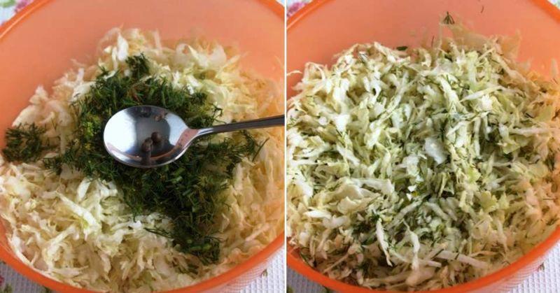 Подборка лучших рецептов квашеной капусты с укропом и его семенами