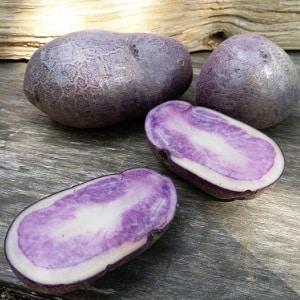 Удивительный цветной картофель: разновидности сортов и их полезные свойства