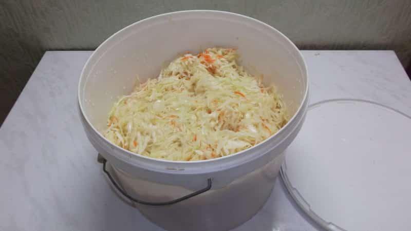 Правильное хранение квашеной капусты в холодильнике: сколько хранится и как продлить срок годности