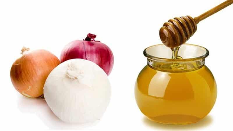 Как правильно готовить и применять лук с медом от кашля