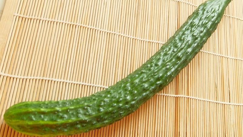 Лучшие сорта китайских огурцов: описание и фото
