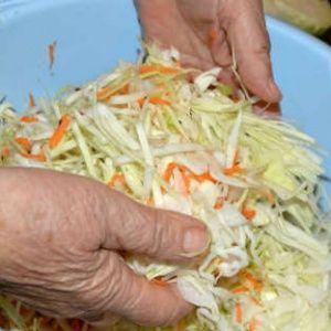 Когда лучше всего солить и квасить капусту на зиму?