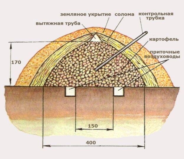 Картофельная яма своими руками