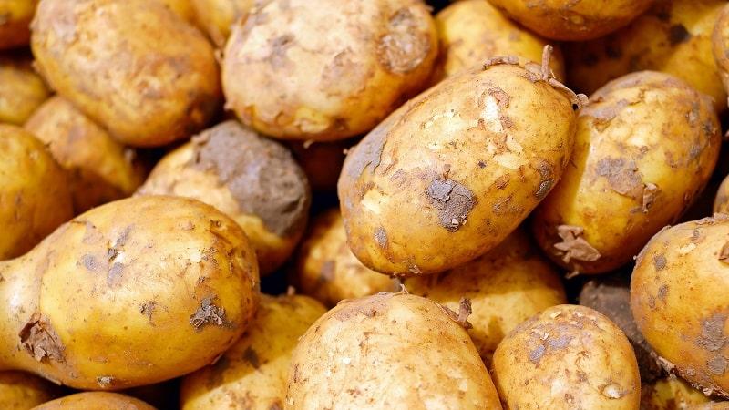 Как проверить наличие кадмия в картофеле, и чем он опасен для человека