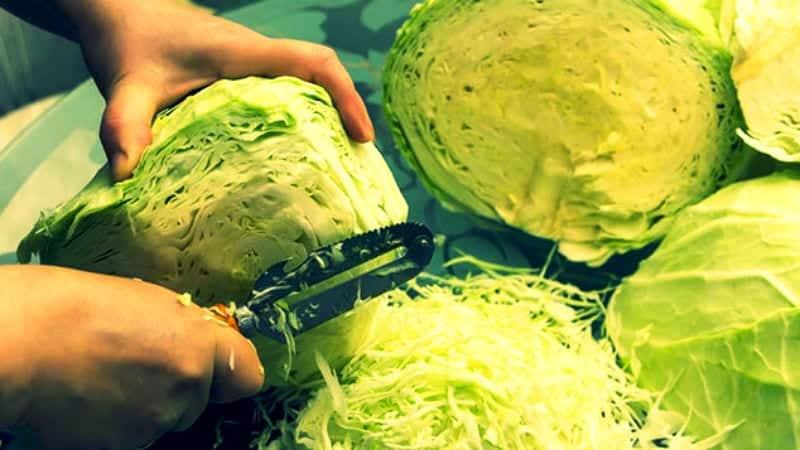 Как заготовить квашеную капусту с медом на зиму вкусно и просто