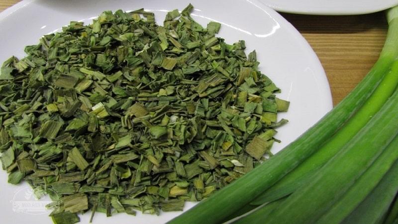 Как заготовить сушеный лук разными способами и куда его применять