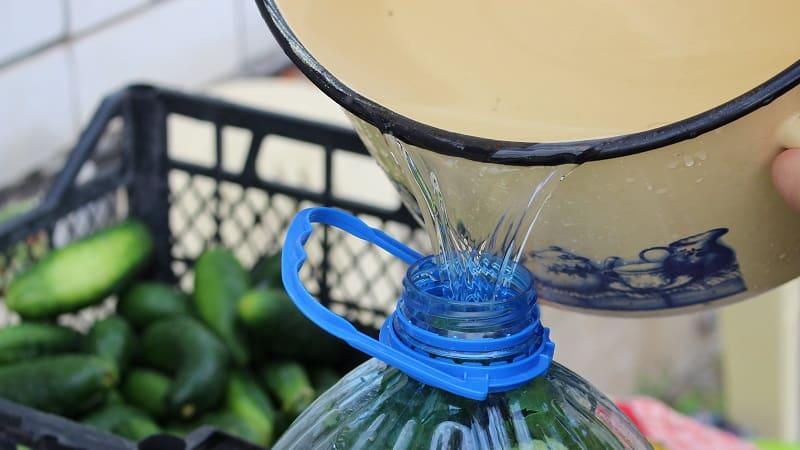 Как засолить огурцы в 5 литровой пластиковой бутылке: подготовка, приготовление и хранение