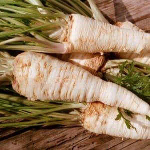 Чем хороша корневая петрушка и почему её стоит выращивать