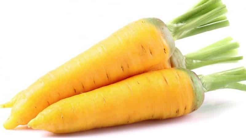 Полезные свойства желтой моркови, и в чем отличие от обычной оранжевой