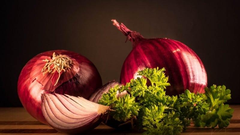 Польза и вред красного лука для организма человека