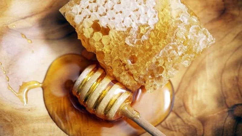 Помогает ли репа с медом от кашля и как правильно применять такое лекарство