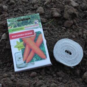 Как правильно сажать семена моркови на ленте и как сделать их в домашних условиях