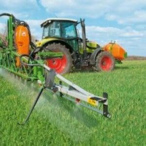 Этапы посева озимой пшеницы и дальнейший уход за посадками