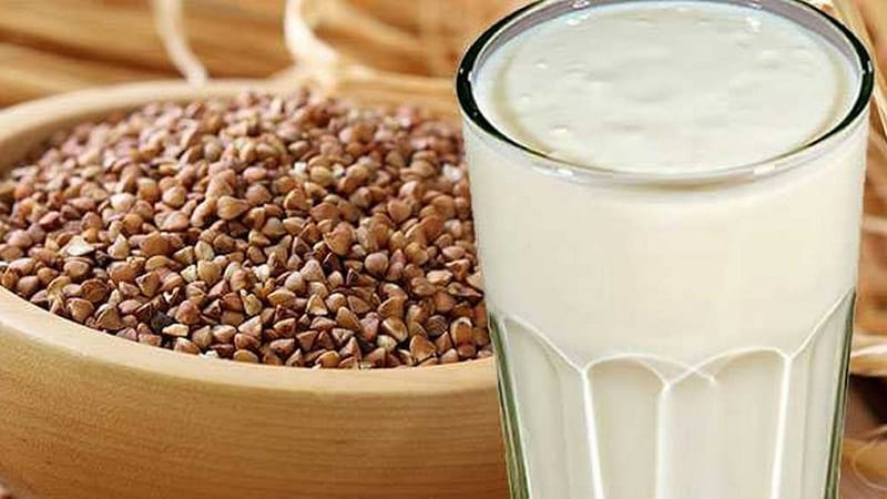 Чем полезна сырая гречка с кефиром худеем и очищаем организм с помощью простейшего сочетания