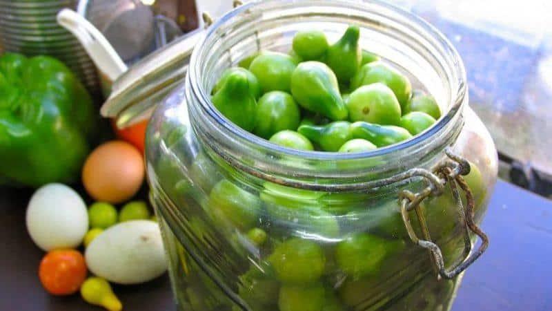Как приготовить бочковые зеленые помидоры в домашних условиях: лучшие рецепты и советы по приготовлению
