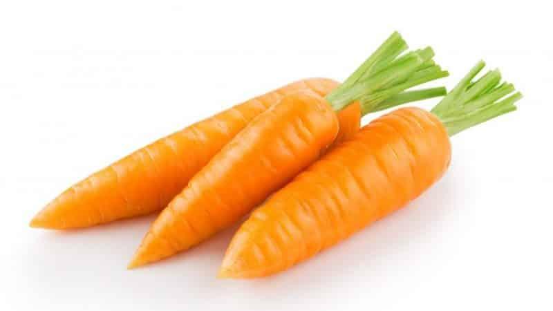 Эталонный французский сорт моркови Каротель