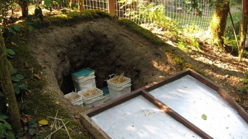 Как сохранить картошку без погреба в частном доме: в подполе на даче, где можно хранить урожай после выкопки, как правильно держать картофель зимой