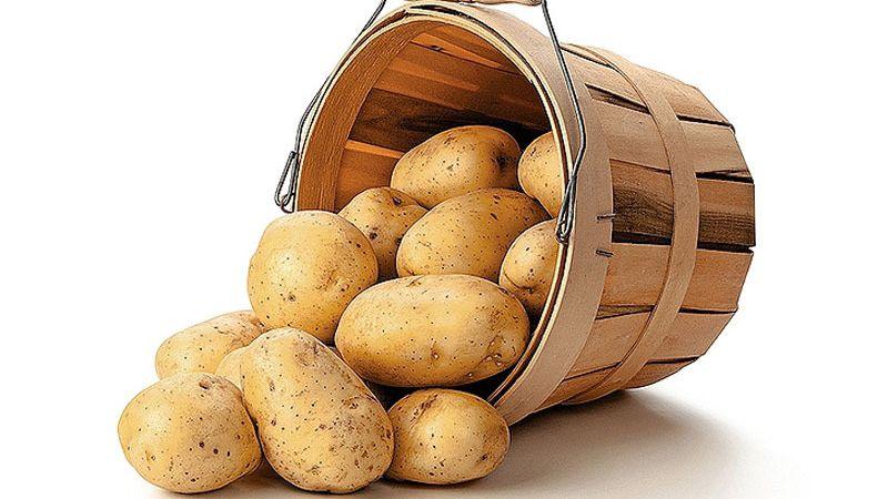 Как правильно хранить картошку зимой в частном доме без погреба