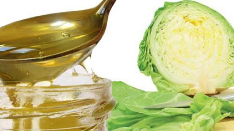 Как правильно применять капусту с медом от кашля и насколько это эффективно
